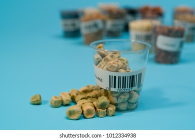 seeds of peas in the laboratory of Seed Certification  and Quality Control