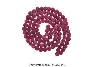 Seeds of the sacred Rudraksha tree. Close-up
