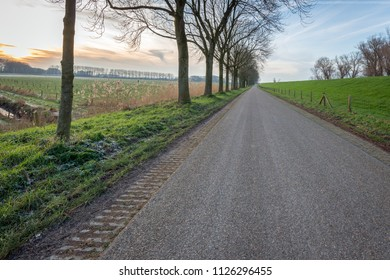 Seemingly endless country road during sunset. A dike is on one side of the road and on the other side is a row of tall bare trees. It is at the end of a sunny day in wintertime.