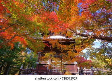 Seiryoji is a zen temple on the Arashiyama that  coloful maple autumn offers to understanding what is Wabi-sabi(Sadness) style when in here.