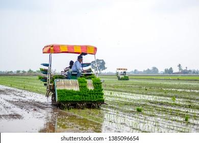 Corn Field Tractor Images, Stock Photos & Vectors   Shutterstock