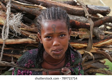 Sekota, Ethiopia – December 14, 2010: woman with branches bunch on the way from the countryside to the market of Sekota