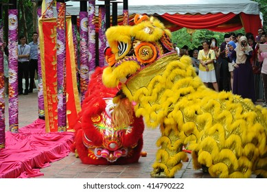 SELANGOR, MALAYSIA -FEBRUARY 18, 2016: The lion dance is a ritual traditions of the Chinese society in Malaysia. The dance is usually played during the Chinese New Year Celebration.