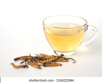 Select focus of mushroom cordyceps (CHONG CAO) this a herbs. With a glass of water, add water from the Ophiocordyceps sinensis extract. Medicinal properties in the treatment of diseases.