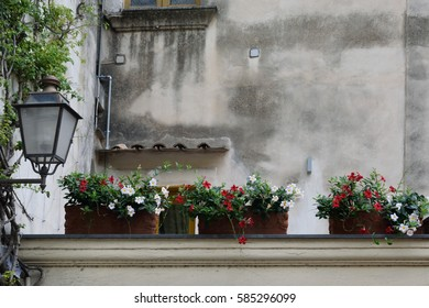 A selection of flowers in pots on top of a wall in Positano, Italy