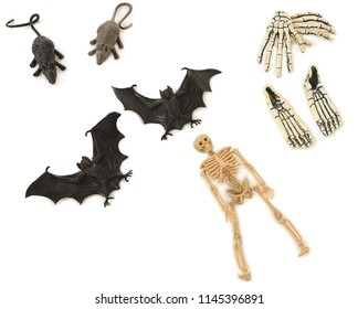 A selection of objects with Halloween theme skeleton; feet and hands bones, rats and bats, laying on a white floor with shadows. Studio photograph.