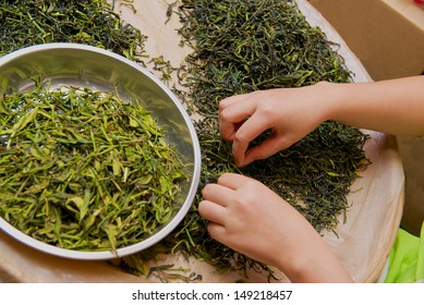 selection of quality tea in the tea market