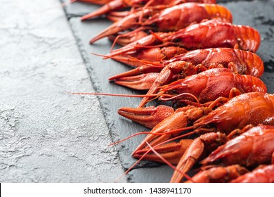 selective focus of black plate with red lobsters on grey textured surface