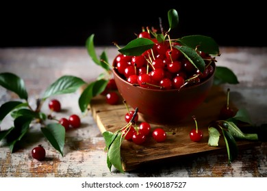 Selective focus. Fresh cherries in a bowl. Harvest of red cherries.