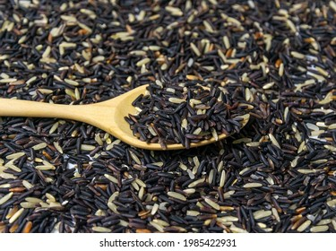 Selective focus of a group of brown or black rice grains that are uncooked and placed on a wooden sppon with the rice grains and brown background. Concept of a healthy diet with fiber and nutrition.