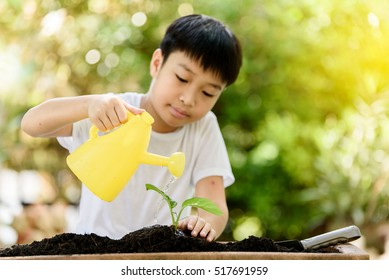 Selective focus at hand, Young Thai boy water on little seedling on the black soil in the garden. Earthday concept.