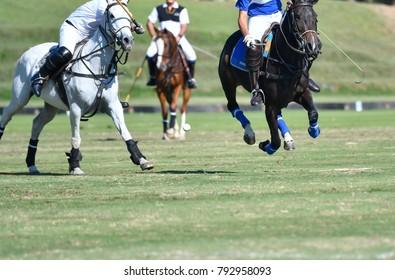 Selective focus Horse Polo Ball in Match.
