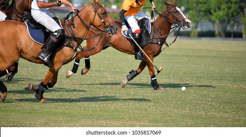 Selective Focus a Horse Polo Player are Playing in Match.