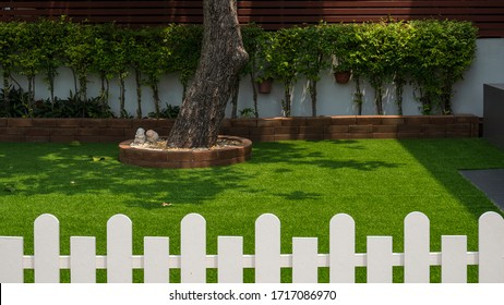 Selective focus at large tree trunk and row of green bush plant on artificial turf in front yard of home with blurred white wooden fence on foreground, home gardening and exterior architecture concept