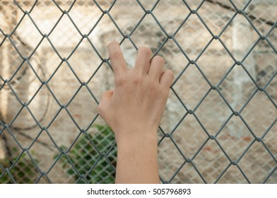 Selective focus on hand holding on the metal net fence, Concept of imprison, lack of independence