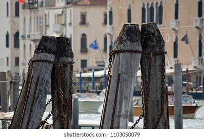 selective focus on wooden posts made of European oak in the Canal Grande, Venice, italy