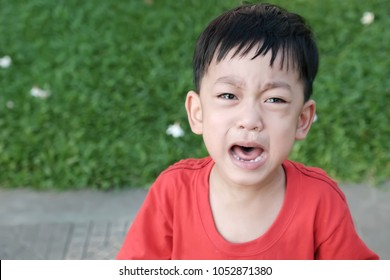 Selective focus at poor Asian boy in the sad mood / The kid crying and screaming / the kid have tears and runny nose on his face / Concept of sadness , crying and unhappy