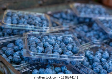 Selective focus of punnets of fresh juicy blueberries