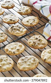 Selective focus was used on these freshly baked homemade chocolate chip cookies that have been placed on baking racks to cool off before storing.