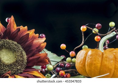 Selective focus was used on this fall themed still life with black background and room for copy space