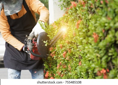 selective focus of worker garden decoration by triming flower by mobile lawnmower