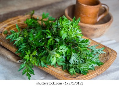 Selective focus. Wormwood (sagebrush) freshly cut for drying to be use as a natural incense (dried smudge sticks). Laying on a wooden tray, vintage background with a wooden bowl and a ceramic cup.