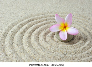 Selective focus of zen stones with frangipani flower with sand background