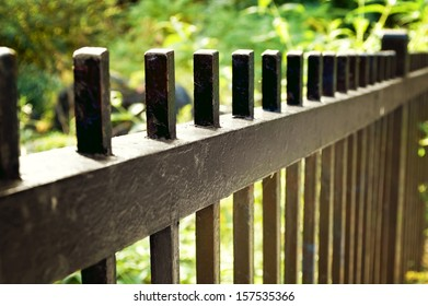 Selective on a black iron fence.