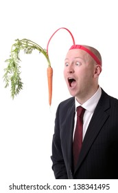 self motivation of dangling a carrot on a stick isolated on white