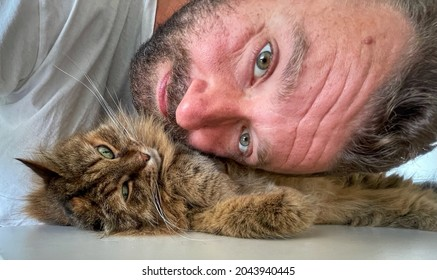 Selfie of a cute cat with the owner