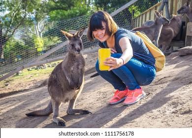 Selfie with kangaroo in Australia.