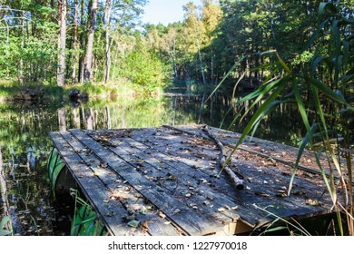 Selfmade raft built by old oil barrels and wooden planks, swimming on a small tranquil lake hidden in forest for leisure activity adventure