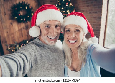Self-portrait of two beautiful adorable cheerful glad positive grey-haired people married spouses granddad and grandma near eve noel fir tree