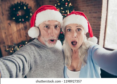 Self-portrait of two nice beautiful cheerful positive amazed stunned astonished grey-haired people granddad and grandma near fir tree opened mouth wow impressed