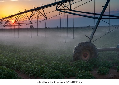 The self-propelled irrigation system in fields on the border of Israel, Egypt and the Gaza Strip