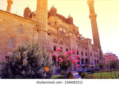 Selimiye mosque's garden