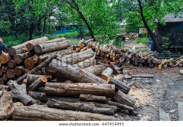 Sell Wood Making Fire Stock Photo (Edit Now) 647414491