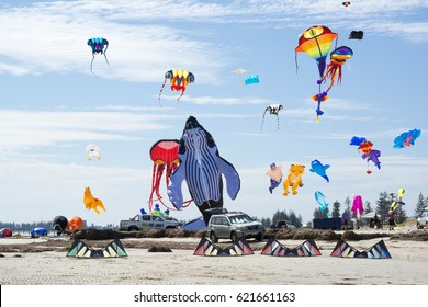 Semaphore, South Australia, Australia - April 15, 2017: Flying figure kites at the Adelaide International Kite Festival. Shapes include whale, octopus, tiger, mermaid, shark and pig.