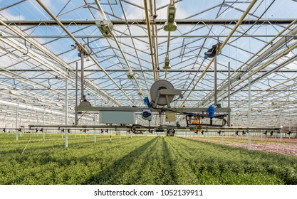 Semi-automatic farming robot spraying in a Dutch greenhouse specialized in the cultivation of chrysanthemum cut flowers.
