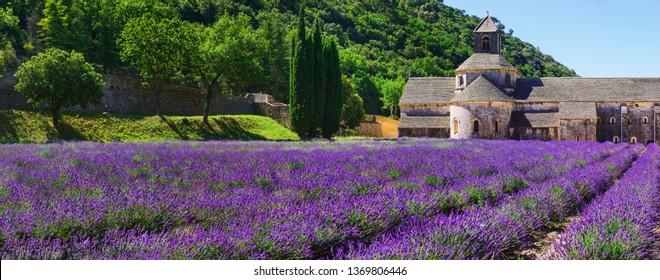 Senanque Monastery - France