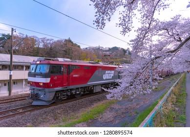 Sendai, Miyagi, Japan - April 5, 2018: JR Tohoku train railroad track with row of full bloom cherry tree along the Shiroishi river with mountain background in Funaoka Castle Park, Miyagi, Japan