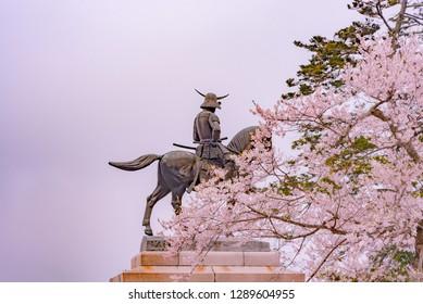 Sendai, Miyagi Prefecture, Japan - April 6, 2018: A statue of Masamune Date on horseback entering Sendai Castle in full bloom cherry blossom