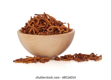 Senega root in a beech wood bowl and scattered isolated over white background. Used in chinese herbal medicine to treat respiratory problems. Yuan zhi.  Radix polygalae tenufoliae.