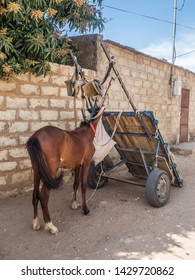 Senegal, Africa - January 30, 2019: A cart  and horse on the on the local street.