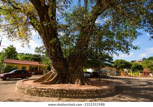 Senhora do Porto Minas Gerais fonte: image.shutterstock.com
