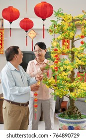 Senior Asian couple decorating apricot tree for celebration