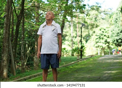 Senior asian man exercise in botanical garden