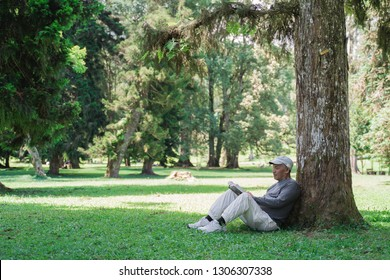 senior asian old man reading a book under the tree in the park