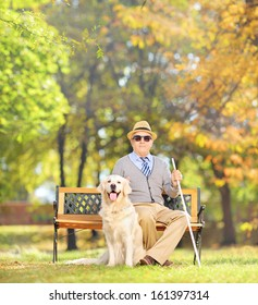 Senior blind gentleman sitting on a wooden bench with his labrador retriever dog, in a park, shot with a tilt and shift lens