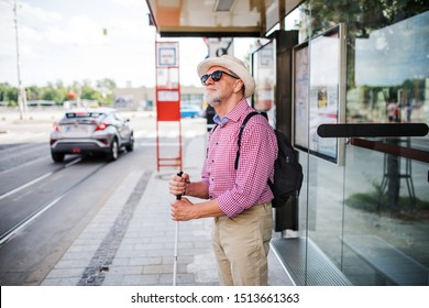 Senior blind man with white cane waiting at bus stop in city.